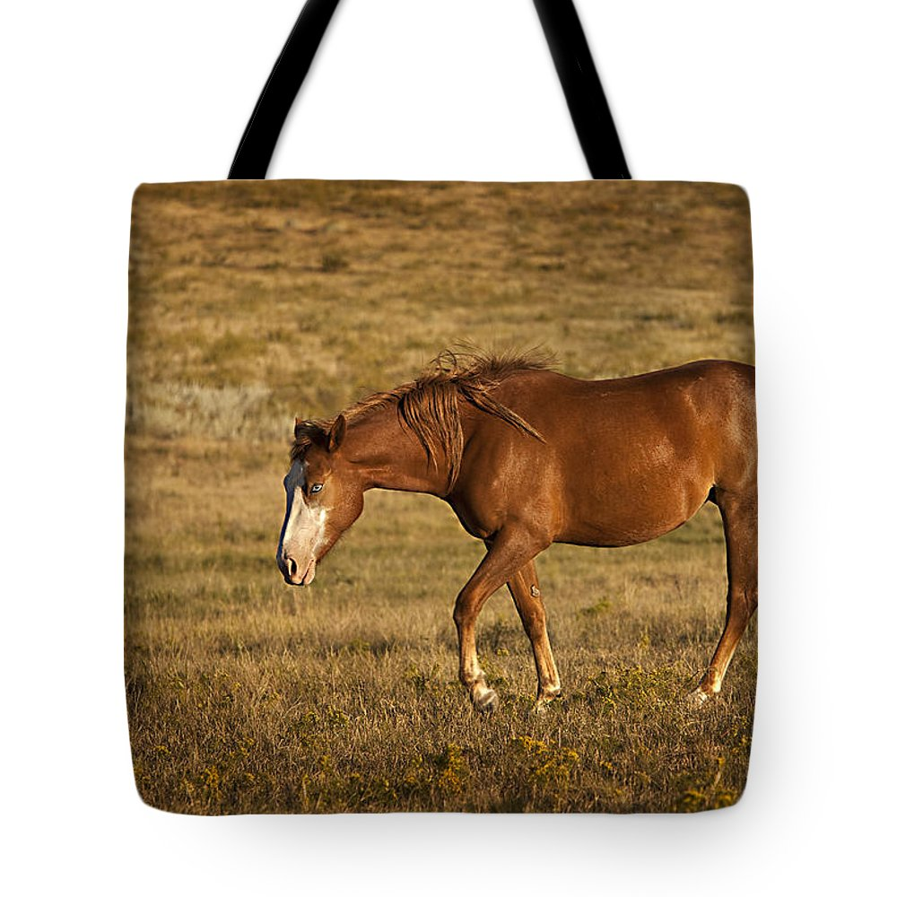 Horse Tote Bag featuring the photograph Keen Eye 2 by Jack Milchanowski