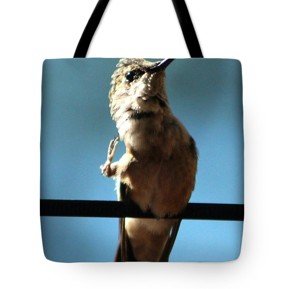 Art Tote Bag featuring the digital art Keep It Clean And Clear by Diane V Bouse