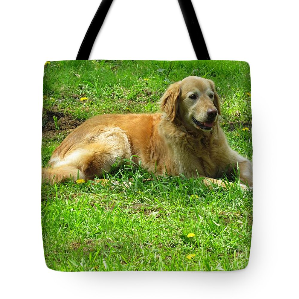 Golden Retriever Tote Bag featuring the photograph Keeping Watch by Elizabeth Dow
