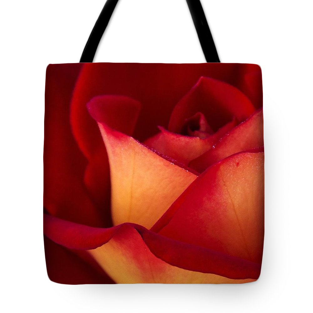 Rose Tote Bag featuring the photograph Ketchup N Mustard by Guy Shultz