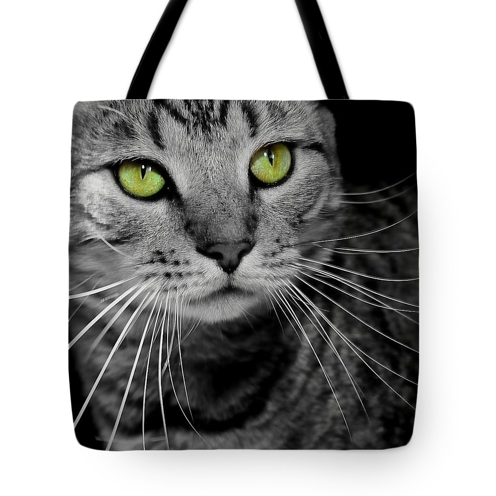 Green Eyes Tote Bag featuring the photograph Key Lime by Joyce Baldassarre