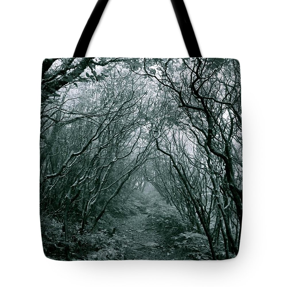 Landscape Tote Bag featuring the photograph Kill The Beast by AR Annahita