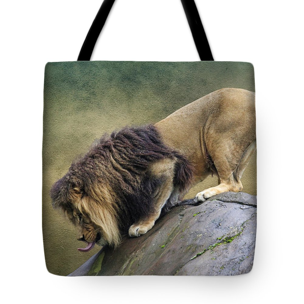 Wildlife Tote Bag featuring the photograph King Of The Hill by Steve McKinzie