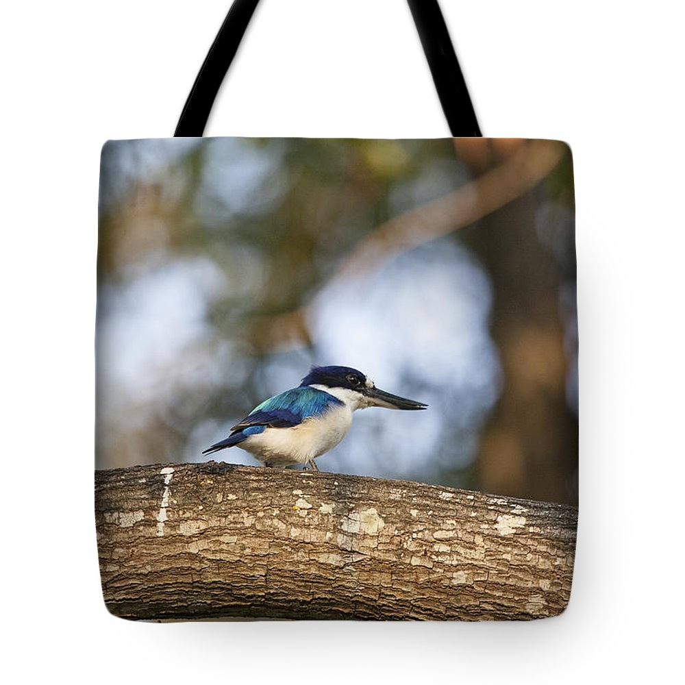 Kingfisher Tote Bag featuring the photograph Kingfisher-top-end Australia by Douglas Barnard