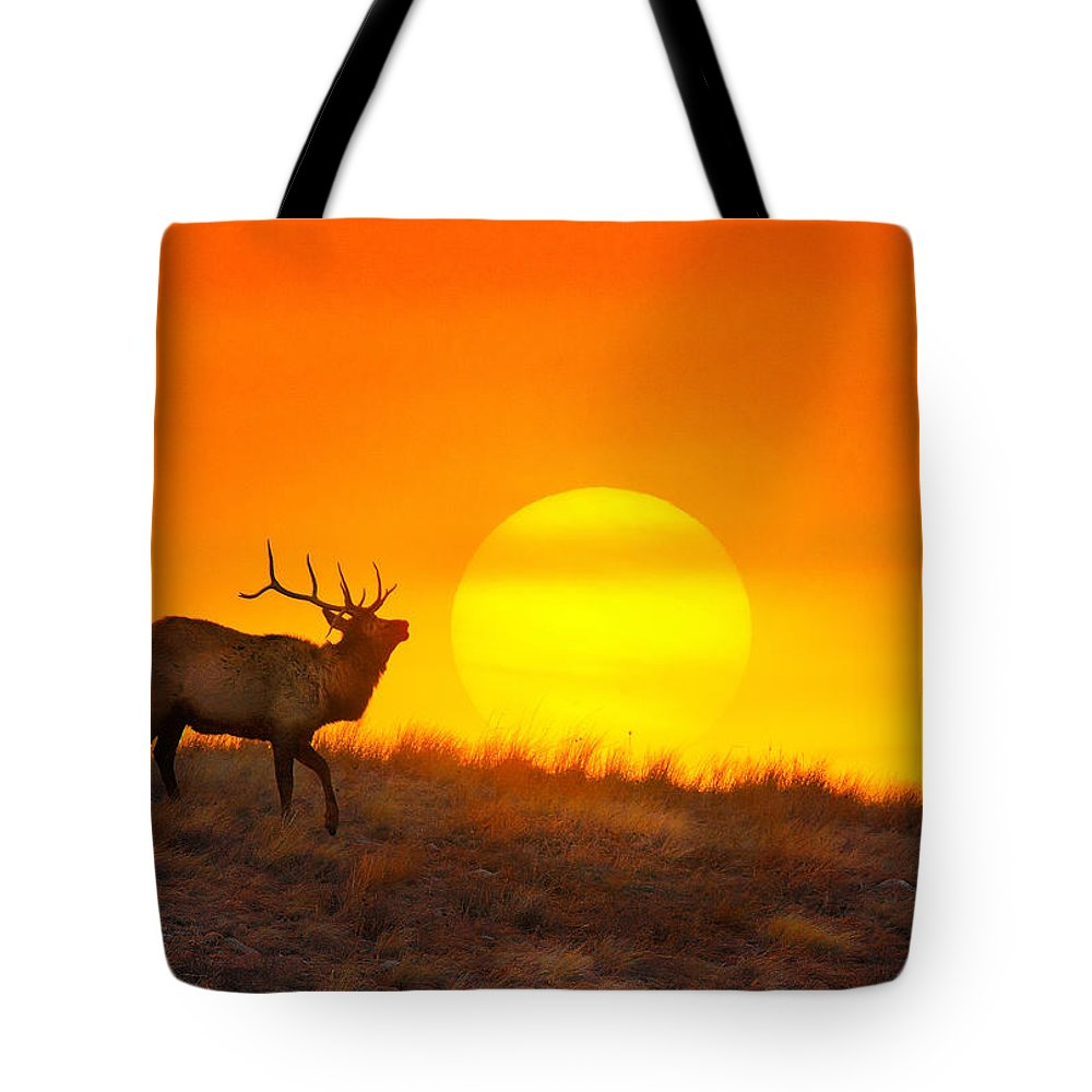 Elk Tote Bag featuring the photograph Kiss The Sun by Kadek Susanto