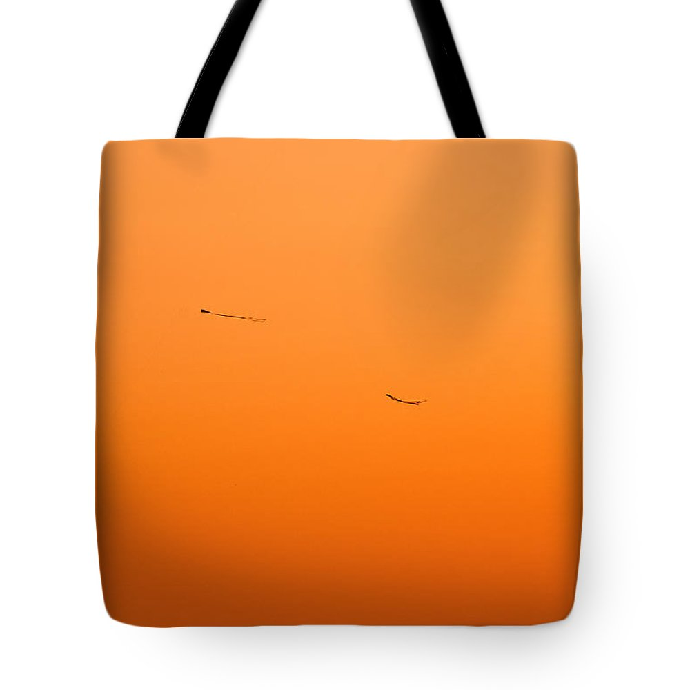 Kite Tote Bag featuring the photograph Kite Flying In The Outer Banks by Don Johnson