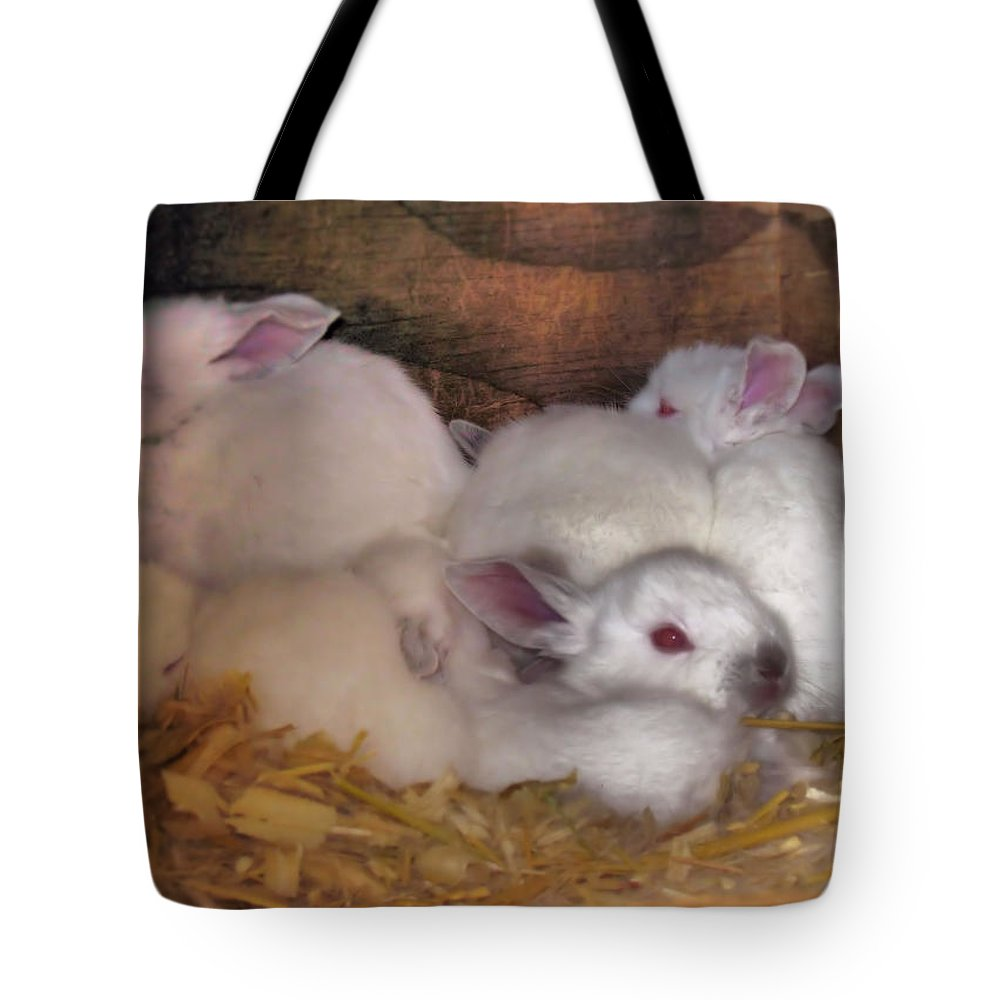 Rabbits Tote Bag featuring the photograph Kits In A Box by Joyce Dickens