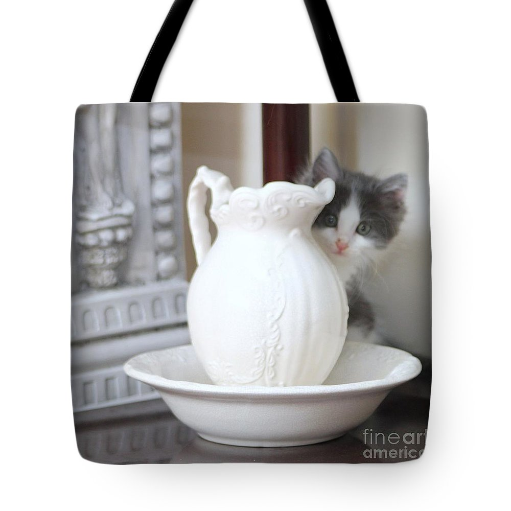 Kitten Tote Bag featuring the photograph Kitten And The Picther by Michelle Powell