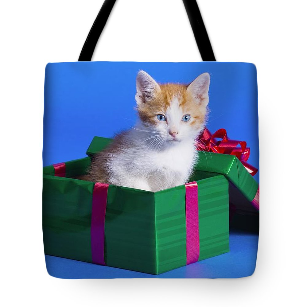 Animal Tote Bag featuring the photograph Kitten In Gift Box by Corey Hochachka