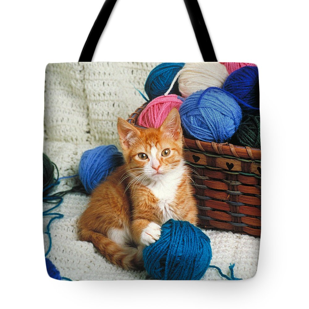 Kitten Tote Bag featuring the photograph Kitten Playing With Yarn by David N Davis