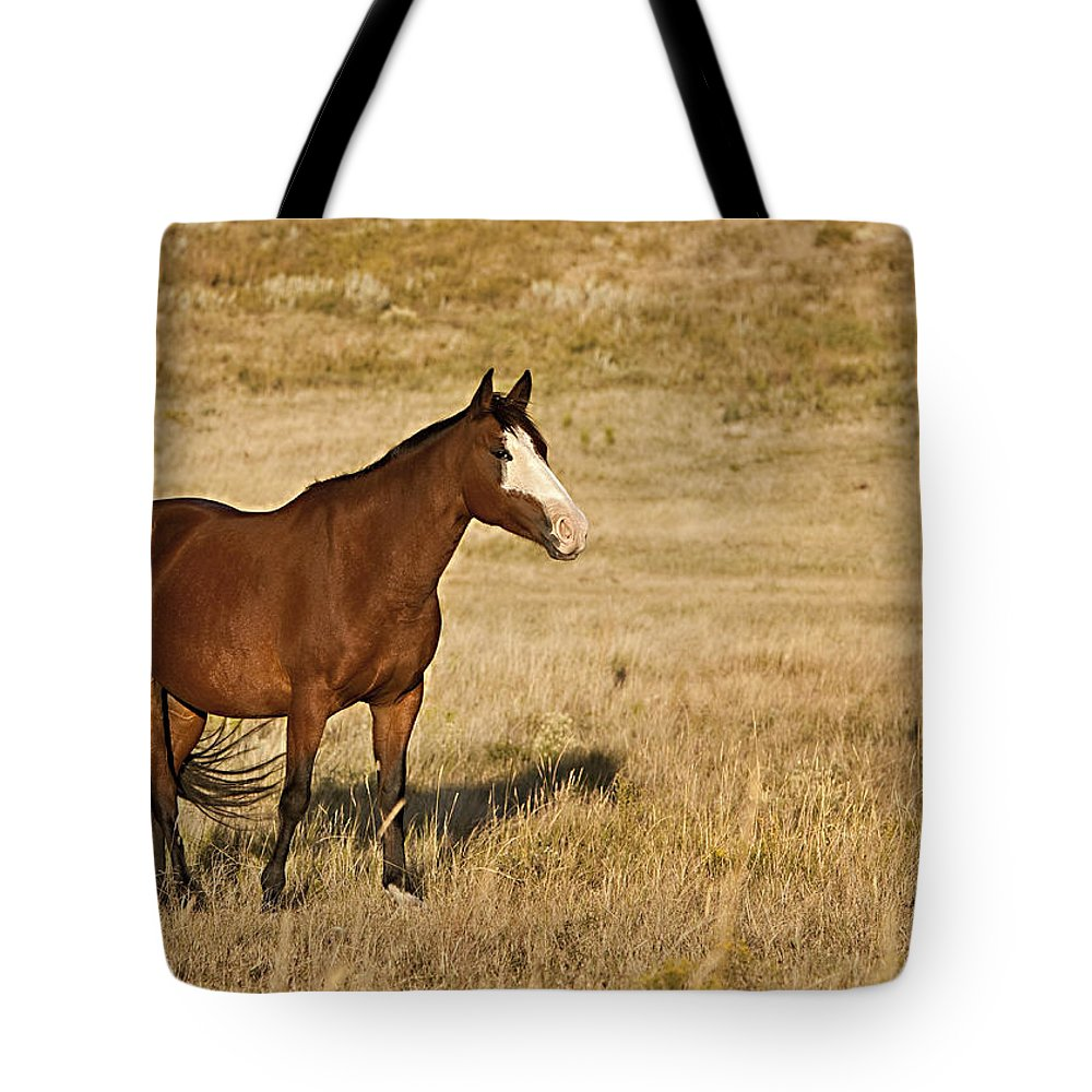 Horse Tote Bag featuring the photograph Knight by Jack Milchanowski