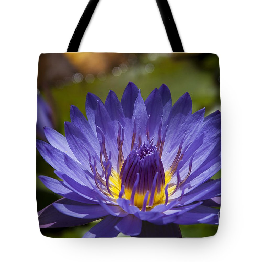 La Fleur De Lotus Star Of Zanzibar Tropical Water Lily Tote Bag