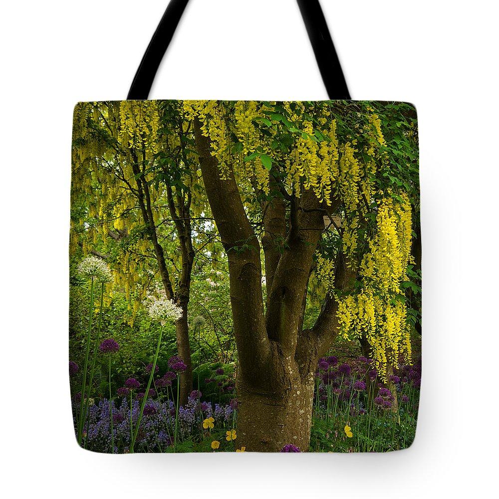 Laburnum Tree In Bloom Tote Bag featuring the photograph Laburnum Tree In Bloom by Jordan Blackstone