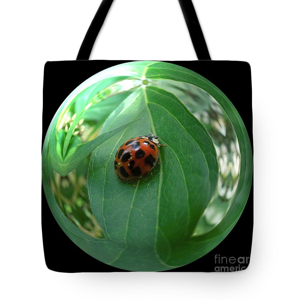 Tote Bag featuring the photograph Ladybug Eating Aphids by Renee Trenholm