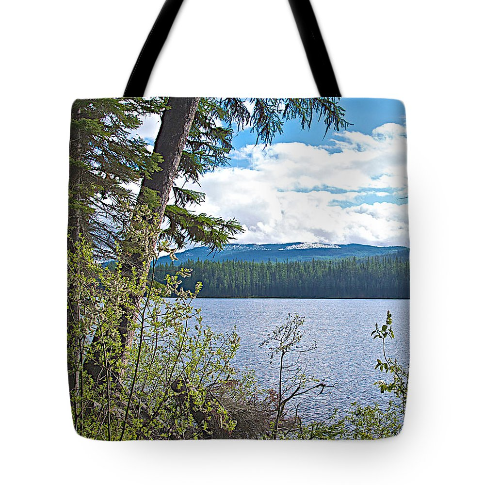Lake Alva From National Forest Campground Site Along Klondike Highway Tote Bag featuring the photograph Lake Alva From National Forest Campground Site-yt by Ruth Hager