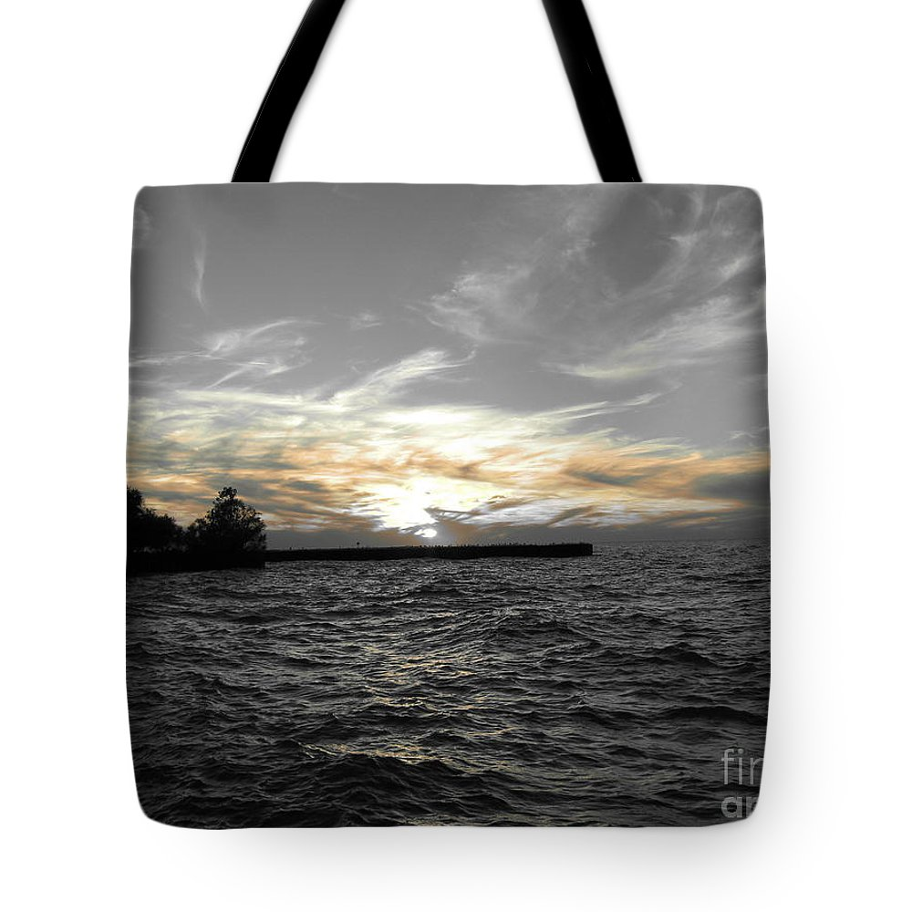Lake Erie Tote Bag featuring the photograph Lake Erie Lights by Michael Krek