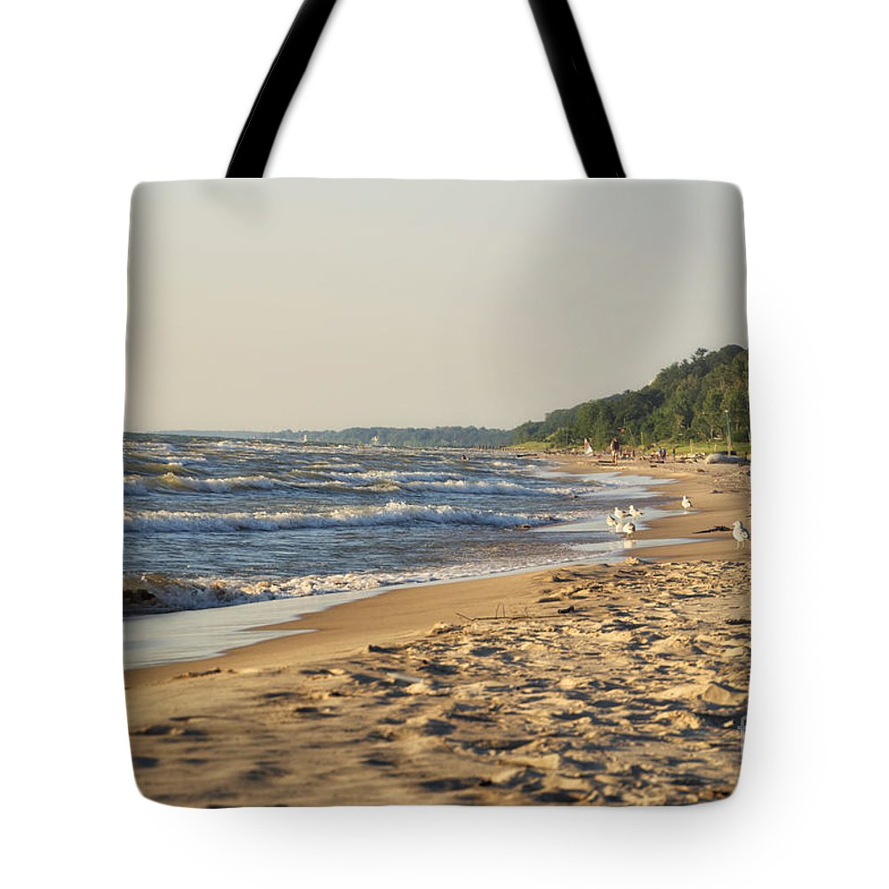 Lake Michigan Tote Bag featuring the photograph Lake Michigan Shoreline 03 by Thomas Woolworth