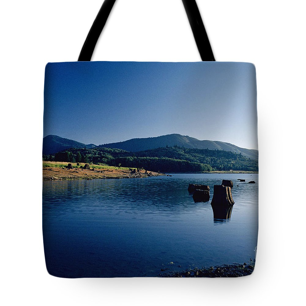 Landscape Tote Bag featuring the photograph Lake Scene by Earl Johnson