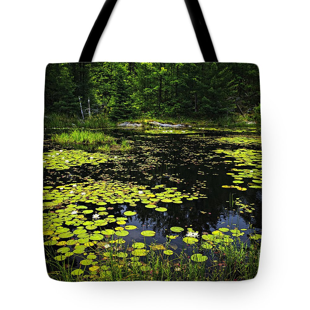 Lake Tote Bag featuring the photograph Lake With Lily Pads by Elena Elisseeva