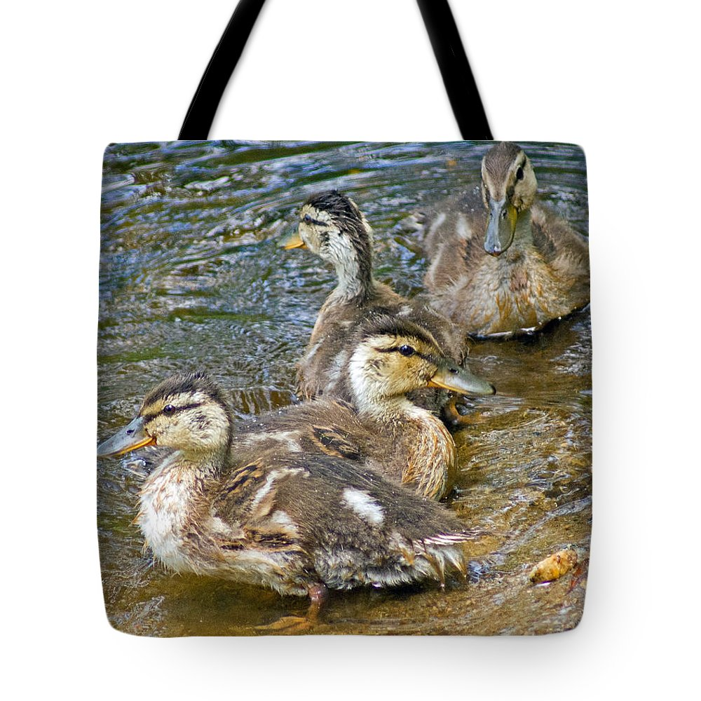 Duck Tote Bag featuring the photograph Lakeside by Joe Geraci