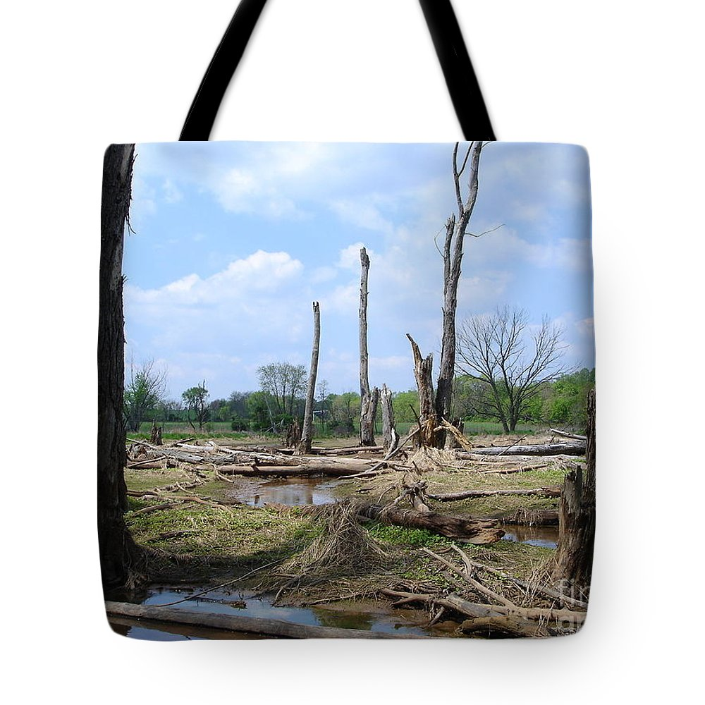 Jane Ford Tote Bag featuring the photograph Land Of The Lost by Jane Ford