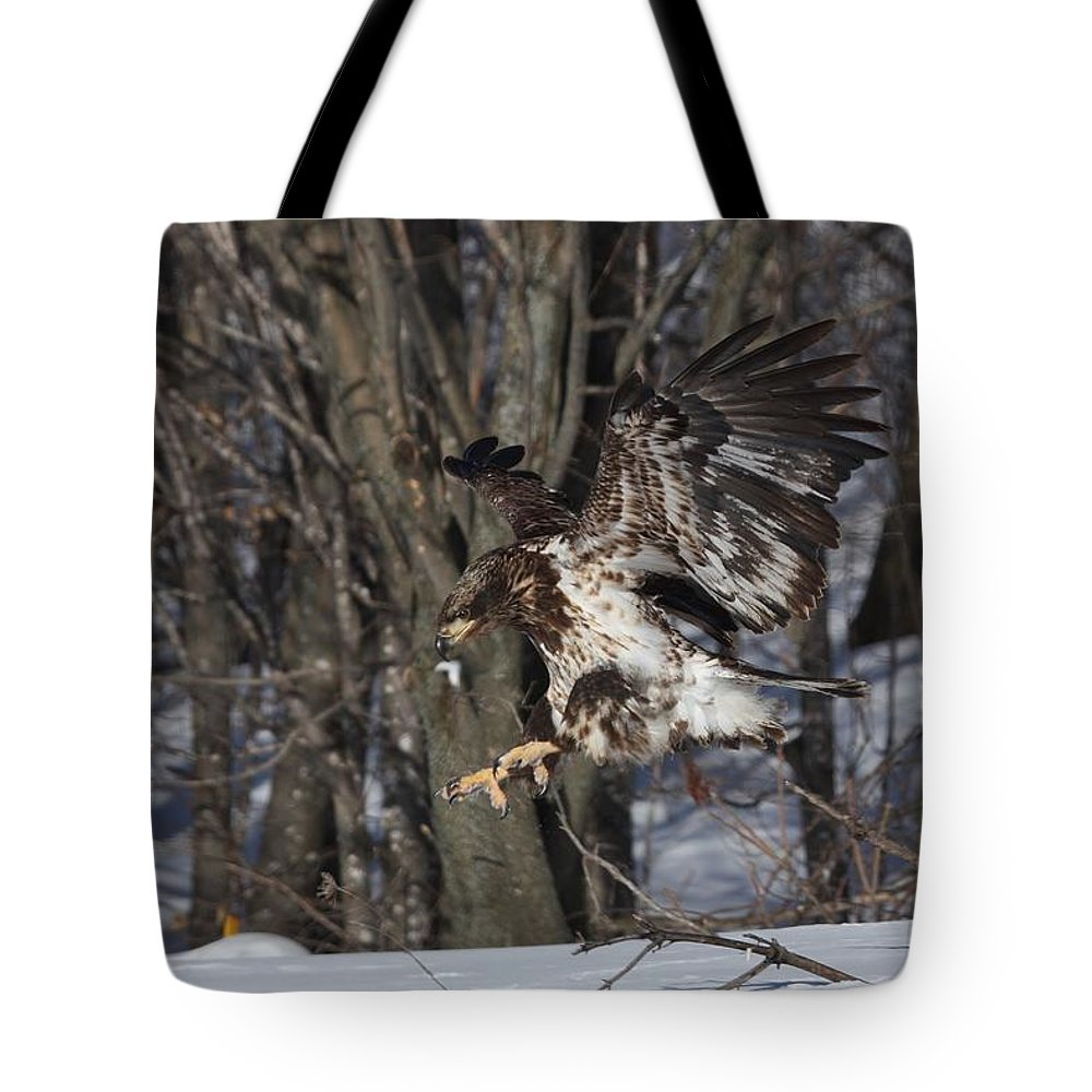 Bald Eagle Tote Bag featuring the photograph Landing Gear Down by Teresa McGill