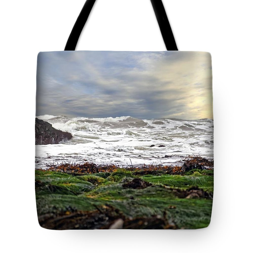 Lands End Tote Bag featuring the photograph Lands End by Scott Hill
