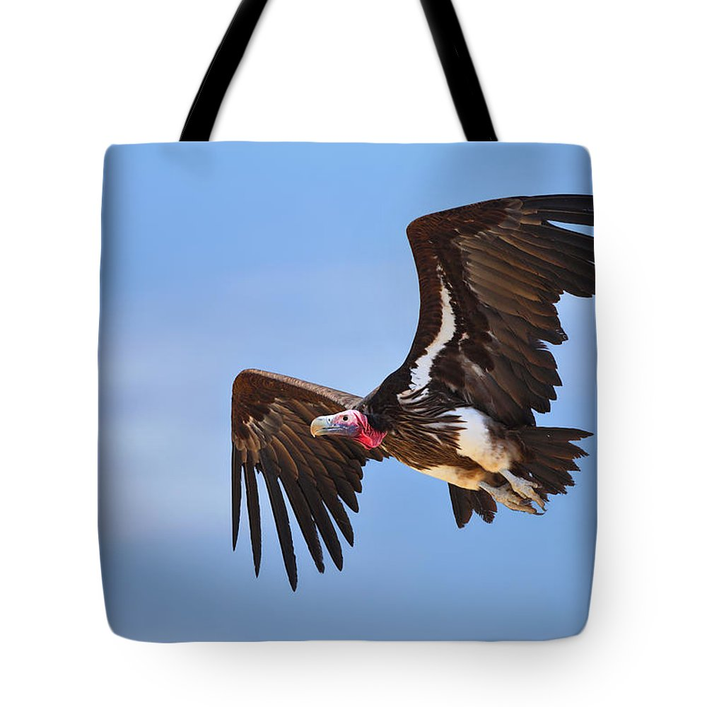 Wings Tote Bag featuring the photograph Lappetfaced Vulture by Johan Swanepoel