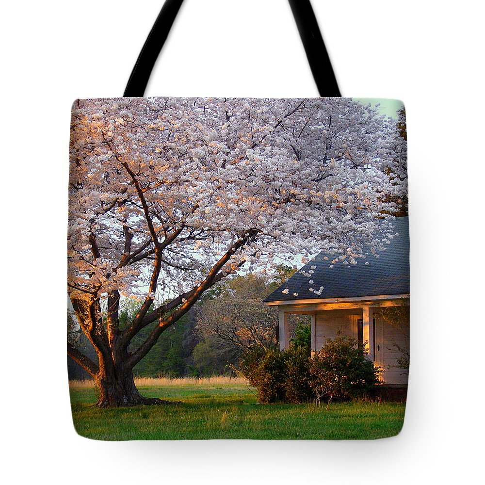 Fine Art Tote Bag featuring the photograph Last Light Of Day In Early Spring by Rodney Lee Williams
