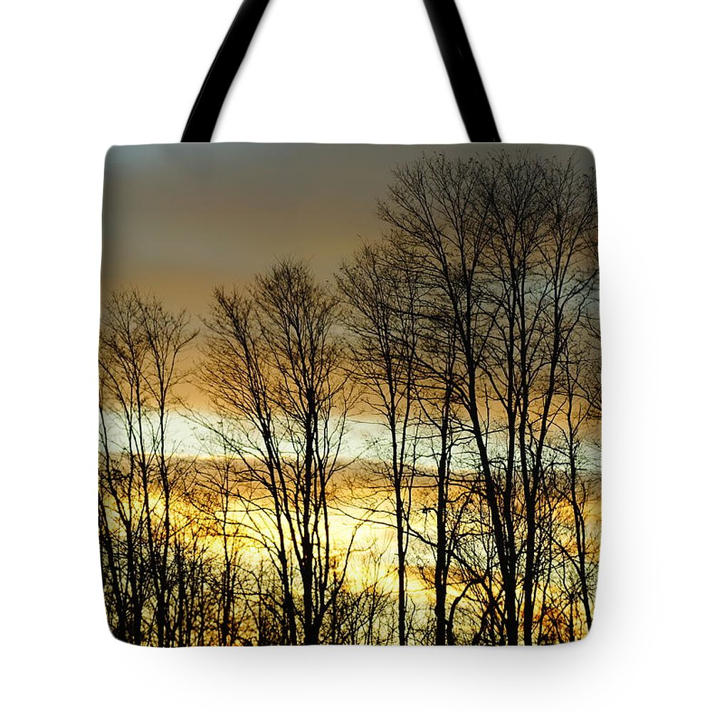 Sunset Tote Bag featuring the photograph Last Rays Of Light by Jeffery L Bowers