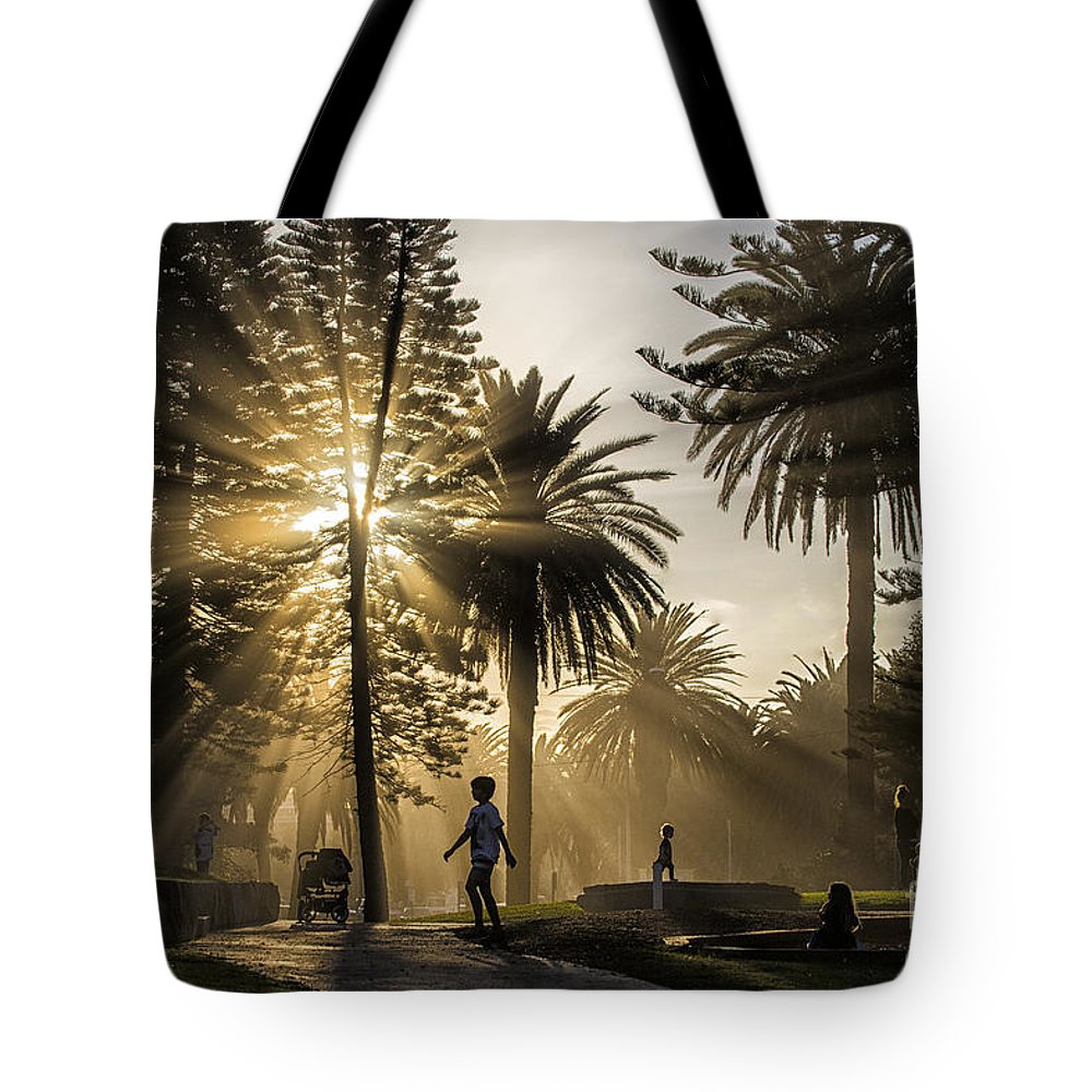 Sunbeams Tote Bag featuring the photograph Late afternoon sunbeams by Sheila Smart Fine Art Photography