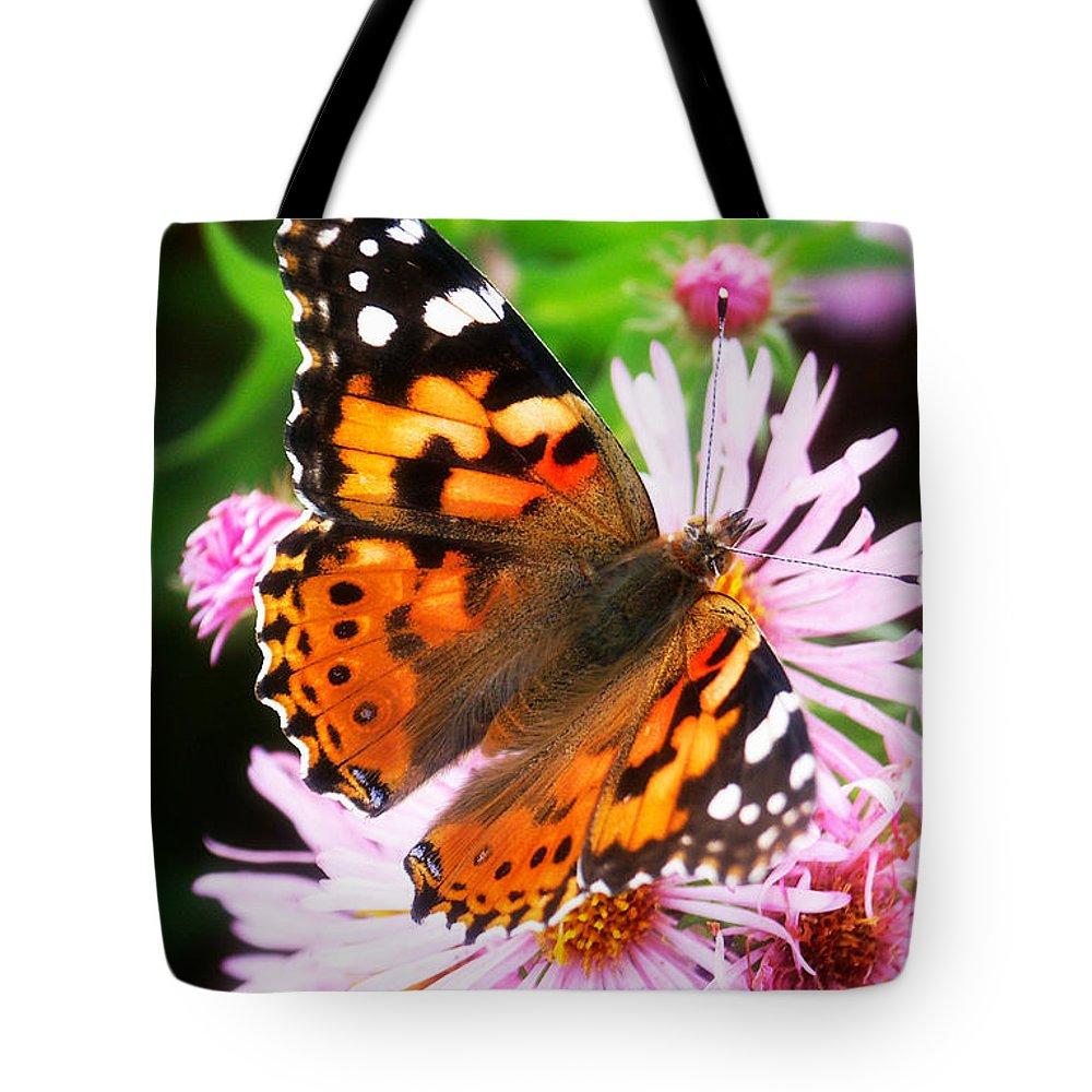 Flower Tote Bag featuring the photograph Late Summer Painted Lady by Marilyn Hunt