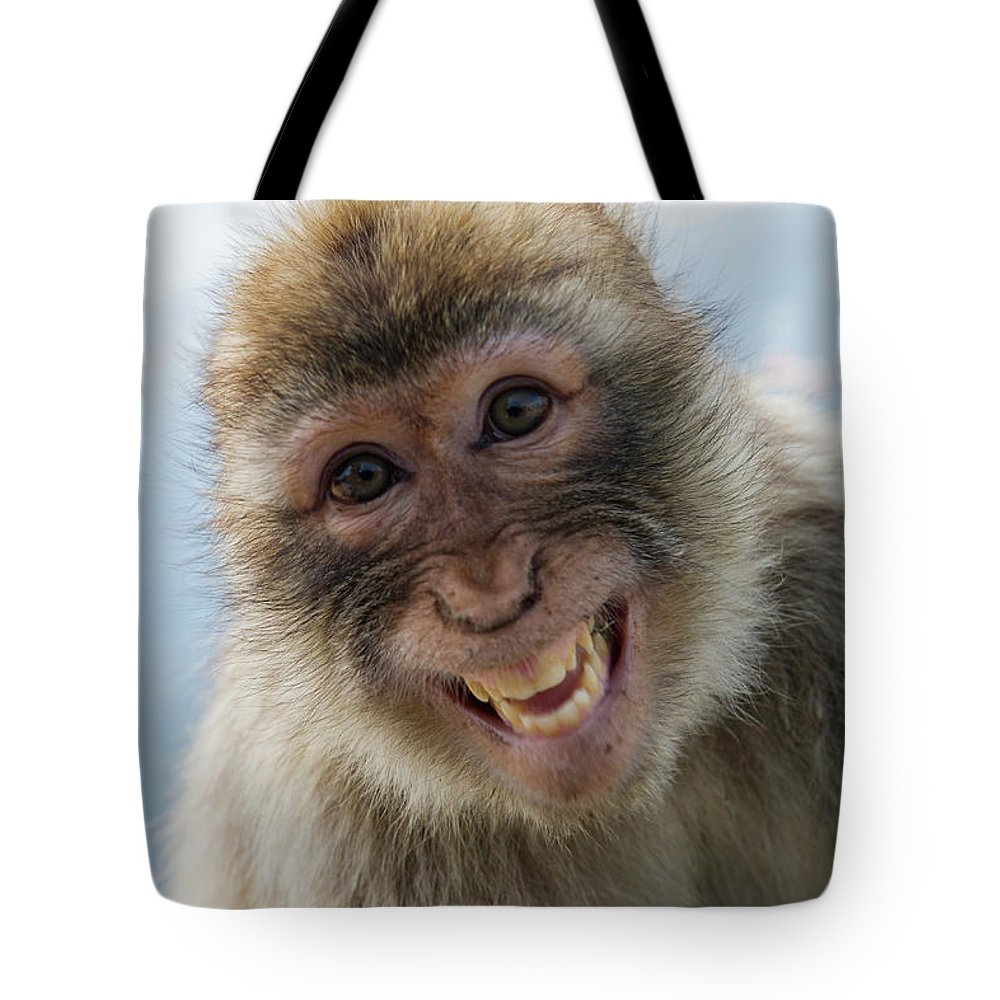 Alertness Tote Bag featuring the photograph Laughing Gibraltar Ape Barbary Macaque by Holger Leue