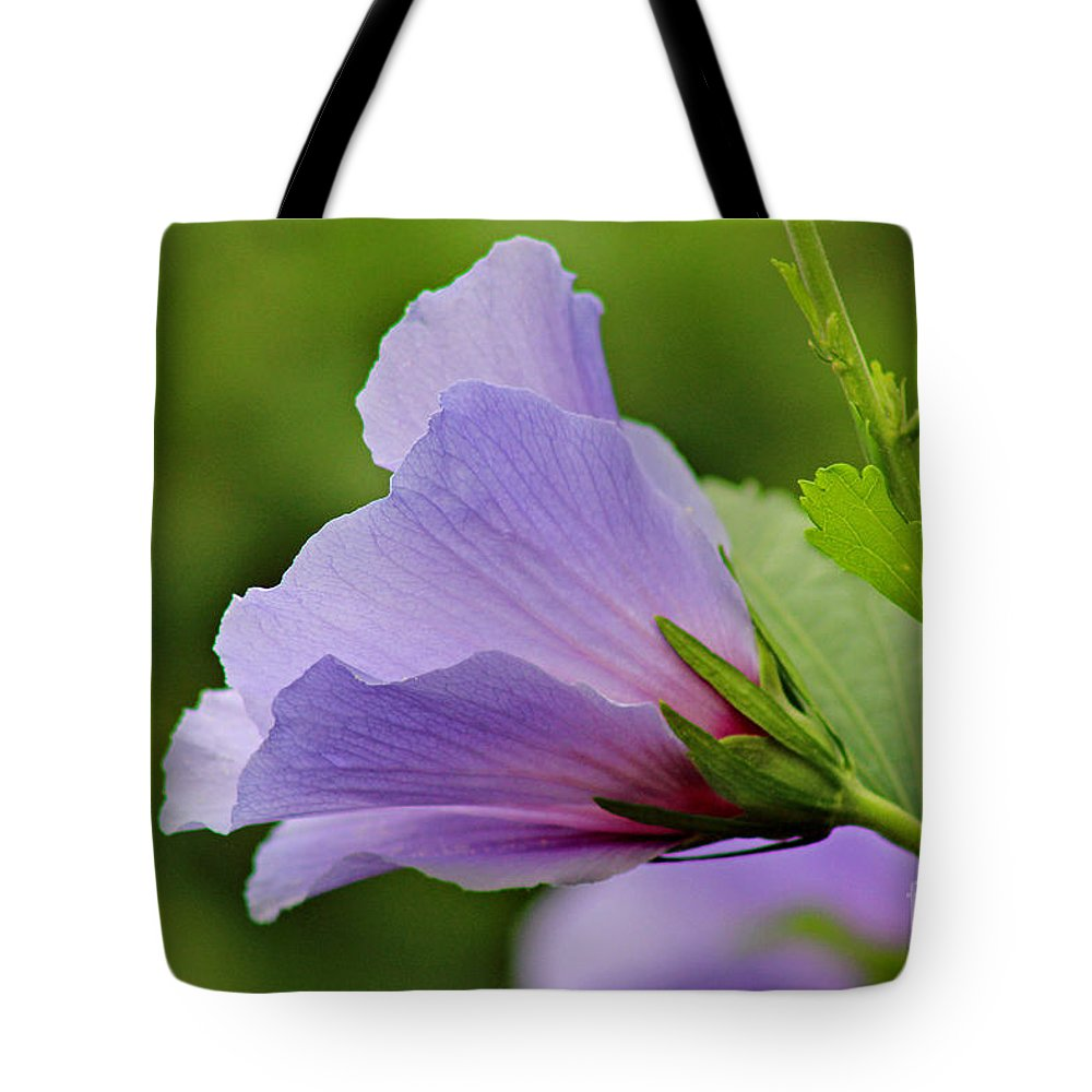 Flower Tote Bag featuring the photograph Lavender Rose Of Sharon Flower by Karen Adams