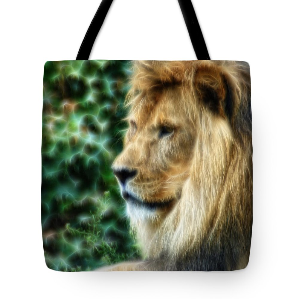 Lion Tote Bag featuring the photograph Lazy Boy Day Dream At The Buffalo Zoo by Michael Frank Jr