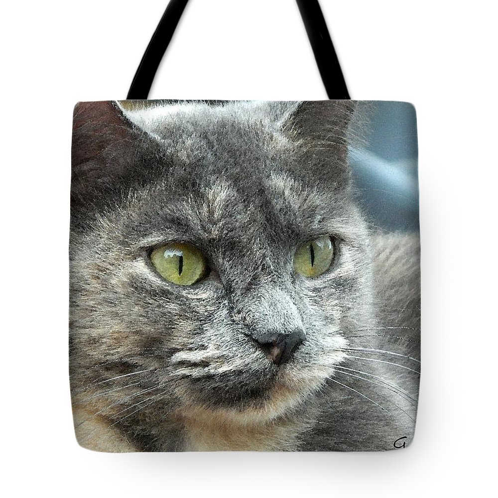 Cat Tote Bag featuring the painting Le Petit Chat by George Pedro