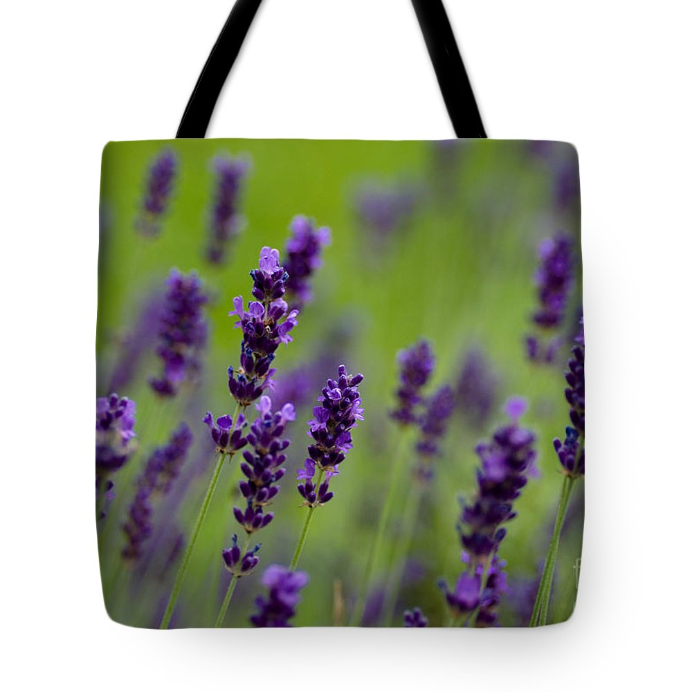 Flowers Tote Bag featuring the photograph Lea Of Lavender by Venetta Archer