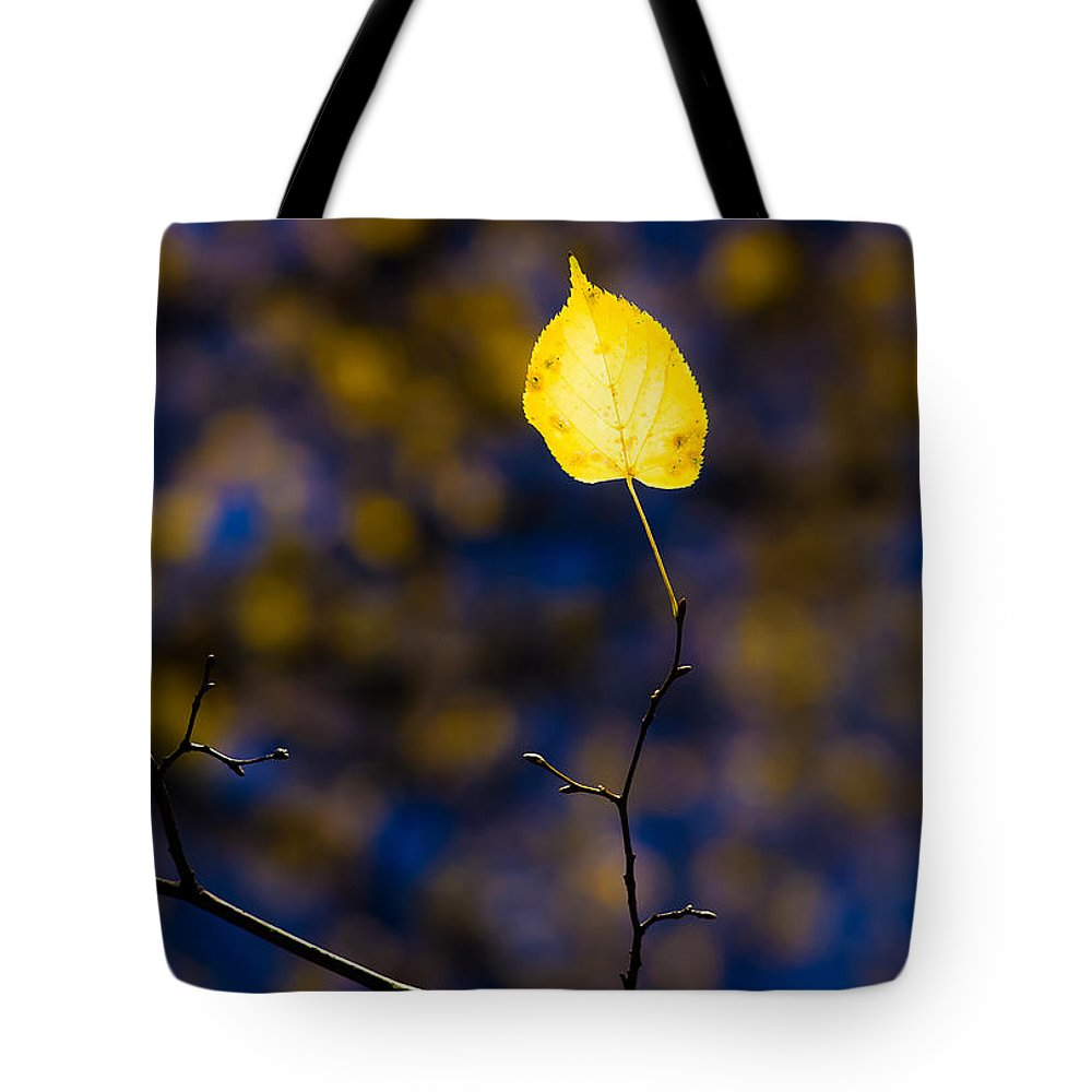 Abstract Tote Bag featuring the photograph Leading Light by Alexander Senin