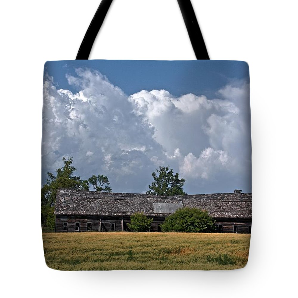 Red Barns Tote Bag featuring the photograph Leaning Barn by David Matthews