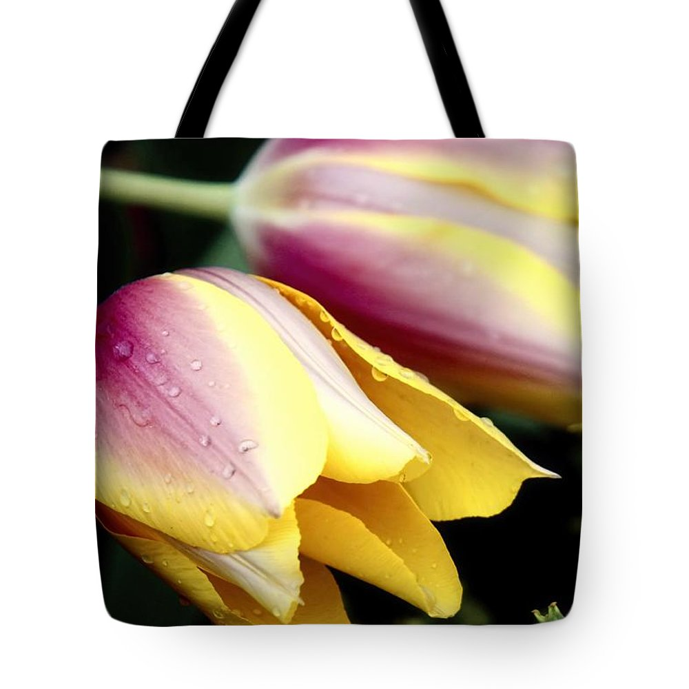 Water Droplet Tote Bag featuring the photograph Leaning From The Dew by Jenny Hudson
