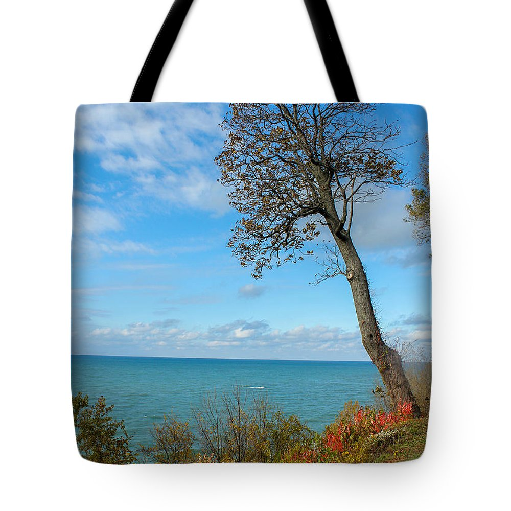 St. Joseph Michigan Tote Bag featuring the photograph Leaning Tree Over Lake by Harold Hopkins