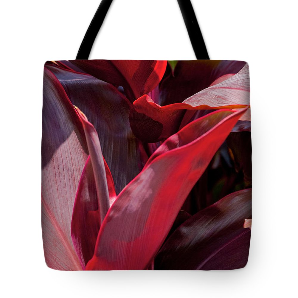 Red Ti Plant Maui Hawaii Nature Leaf Leaves Plants Nature Tote Bag featuring the photograph Leaves Of The Red Ti Plant by Bob Phillips