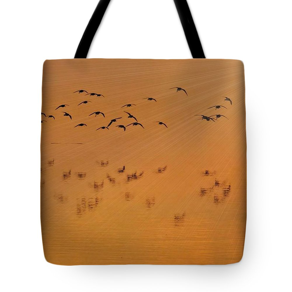Georgia Tote Bag featuring the photograph Left Behind by Laura Ragland
