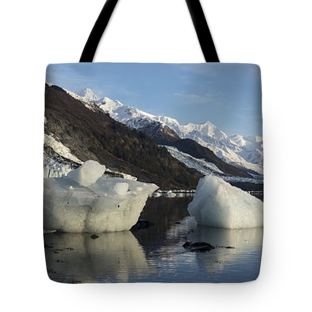 College Fjord Tote Bag featuring the photograph Left By The Tide by Ted Raynor