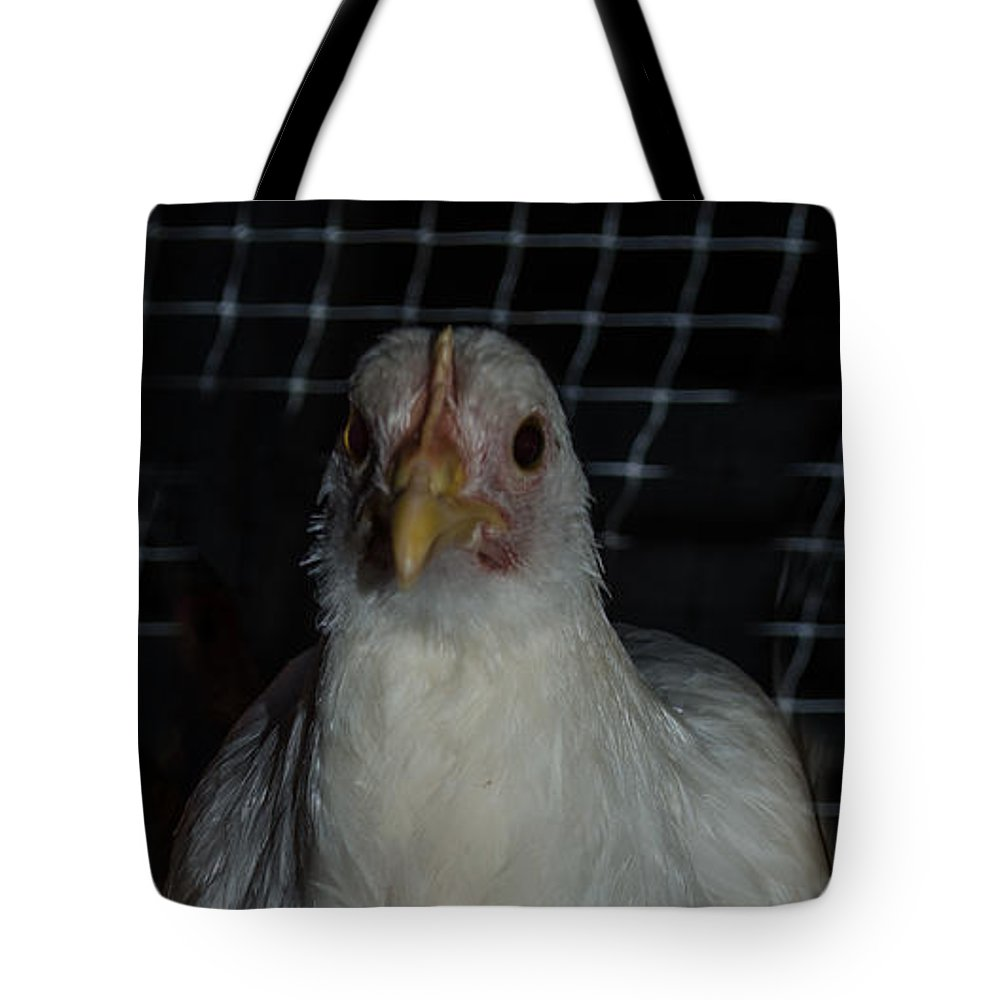 Bird Tote Bag featuring the photograph Leghorn Chicken by Donna Brown