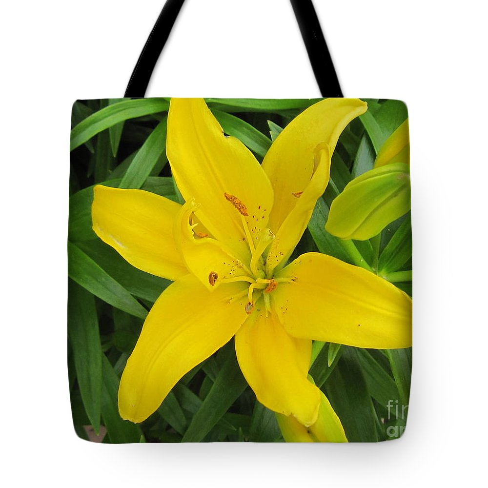 Photograph Tote Bag featuring the photograph Lemon Lily by Nancy Craig