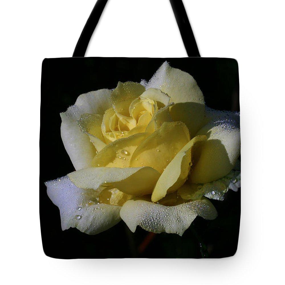 Rose Tote Bag featuring the photograph Lemoncandy by Doug Norkum