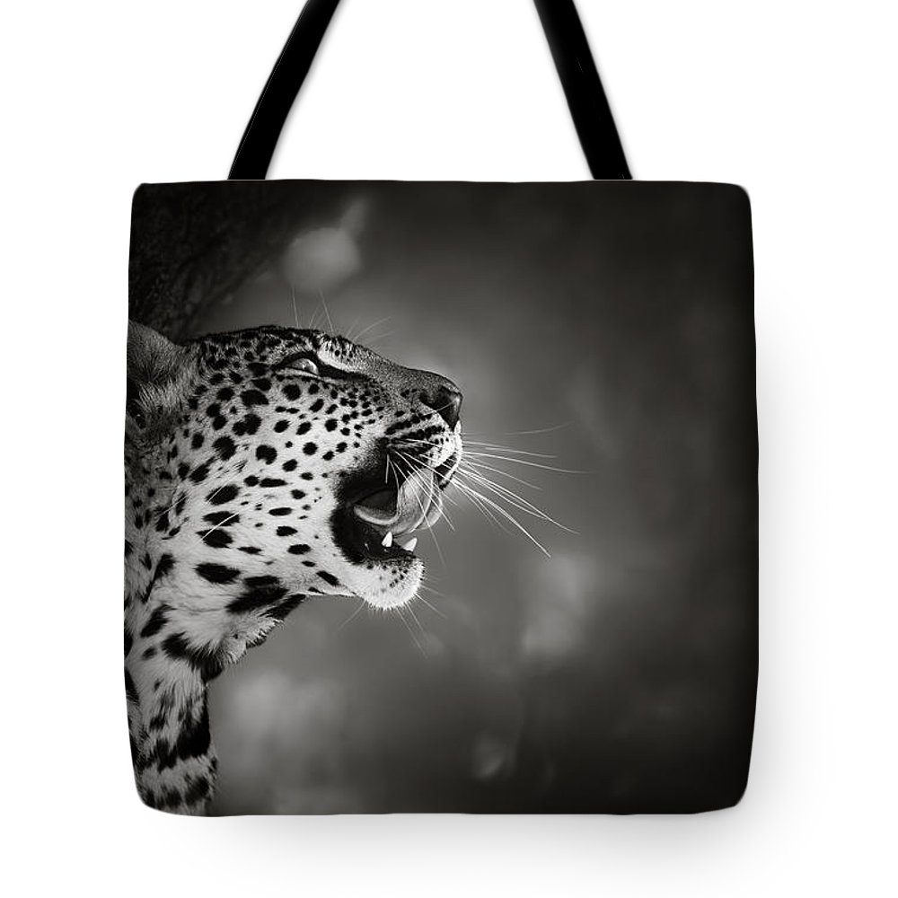 Leopard Tote Bag featuring the photograph Leopard Portrait by Johan Swanepoel