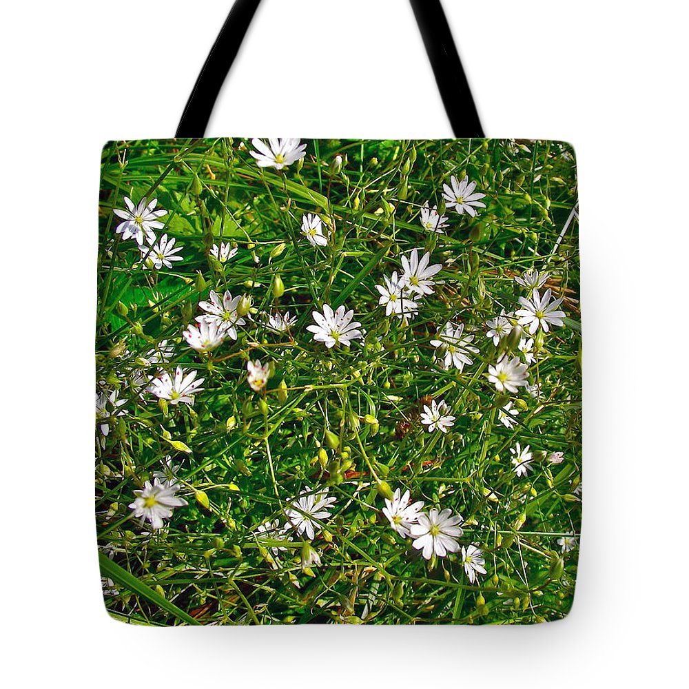 Lesser Stitchwort Near Lobster Cove In Gros Morne Np Tote Bag featuring the photograph Lesser Stitchwort Near Lobster Cove In Gros Morne Np-nl by Ruth Hager