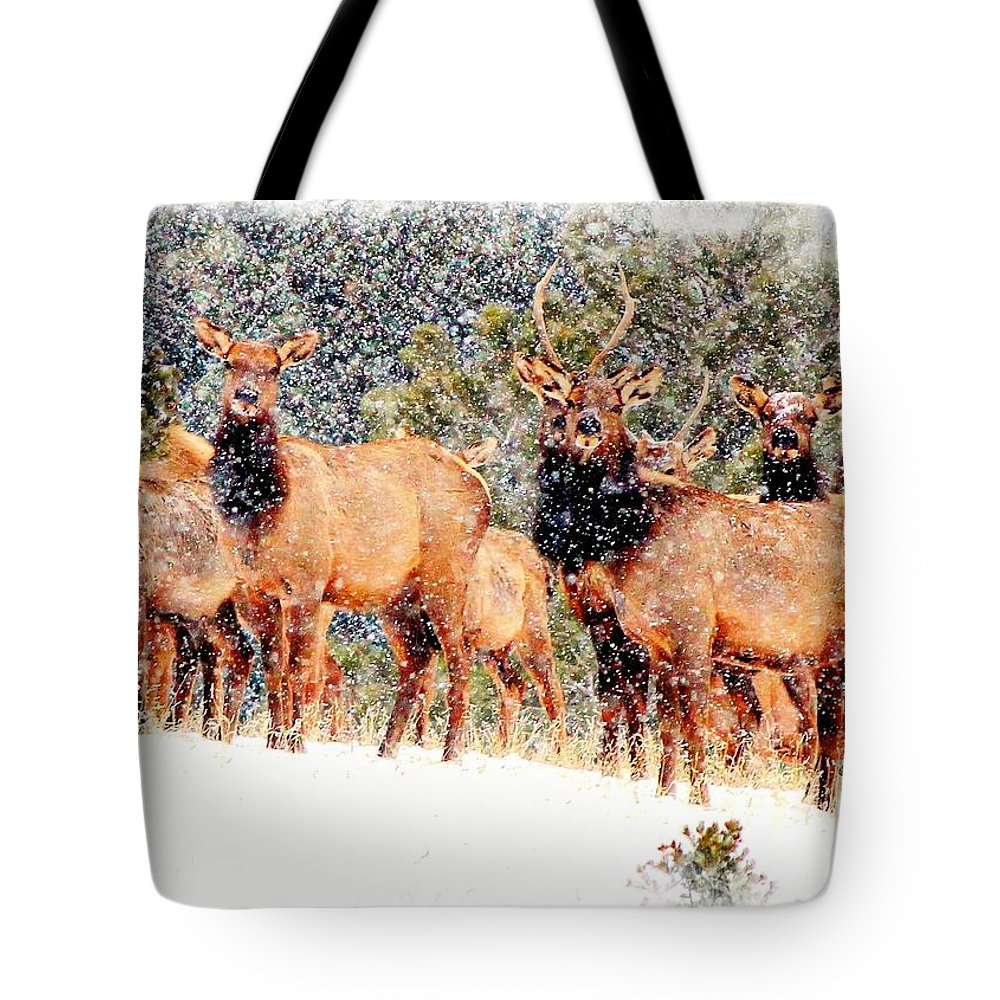 Christmas Card Tote Bag featuring the photograph Let It Snow - Barbara Chichester by Barbara Chichester